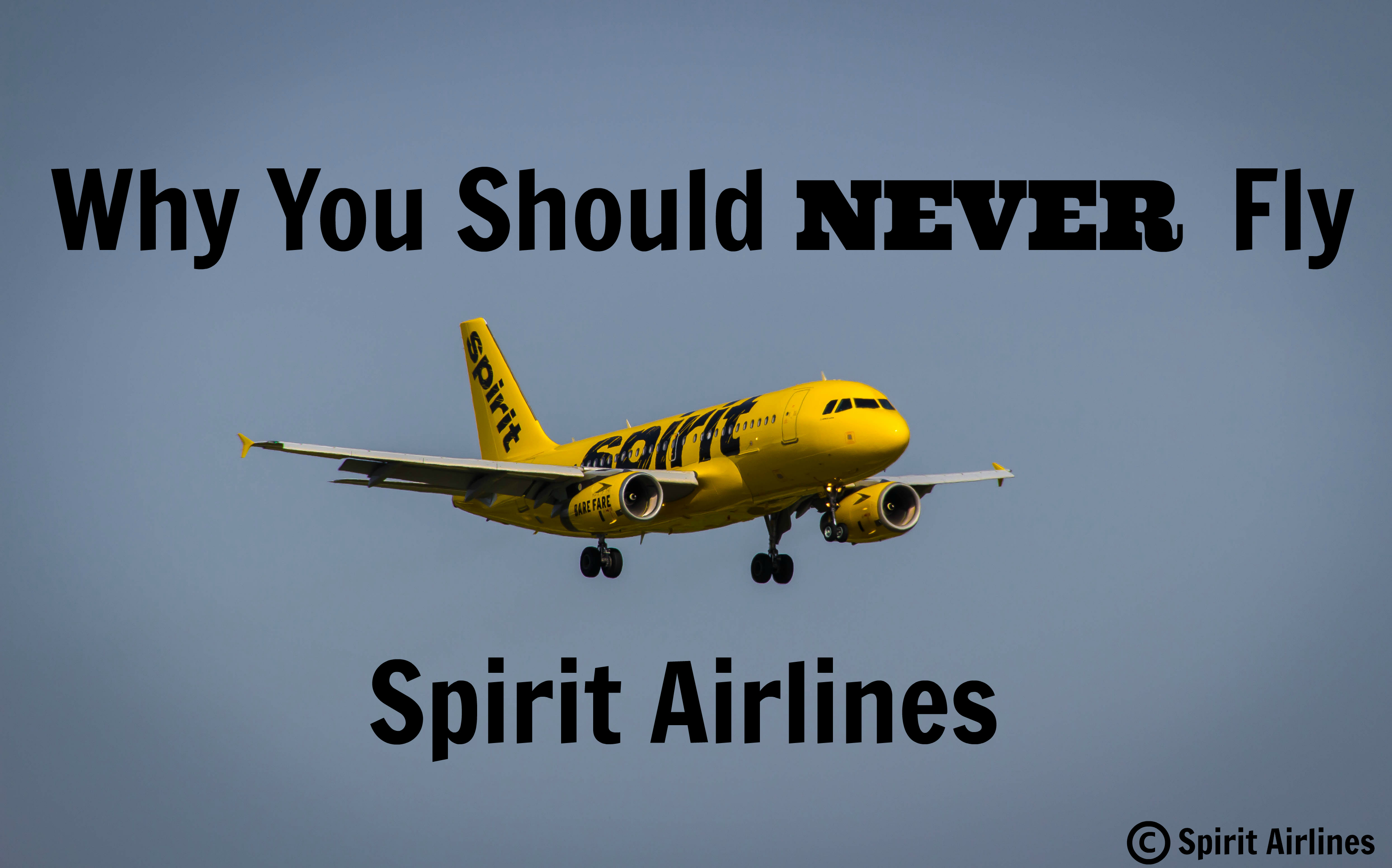 Courtesy of Spirit Airlines