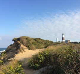 Day Trip Itinerary To The Hamptons
